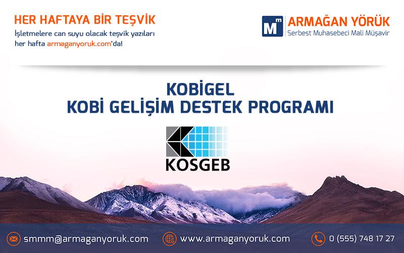 kobigel_kobigelisim_destek_programi